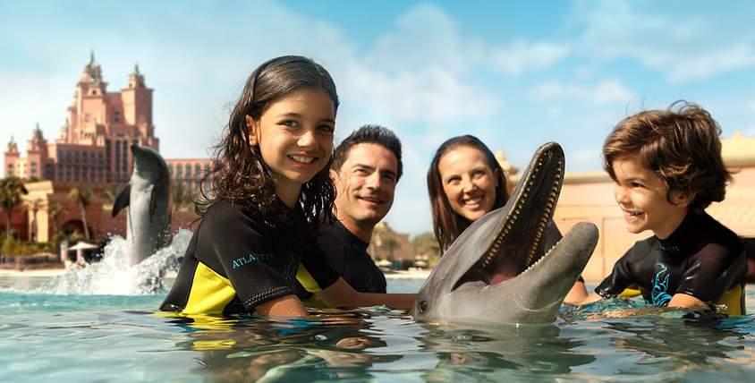 الغوص مع الدلافين في دبي سياحة يعد من اجمل الانشطة السياحية في دبي