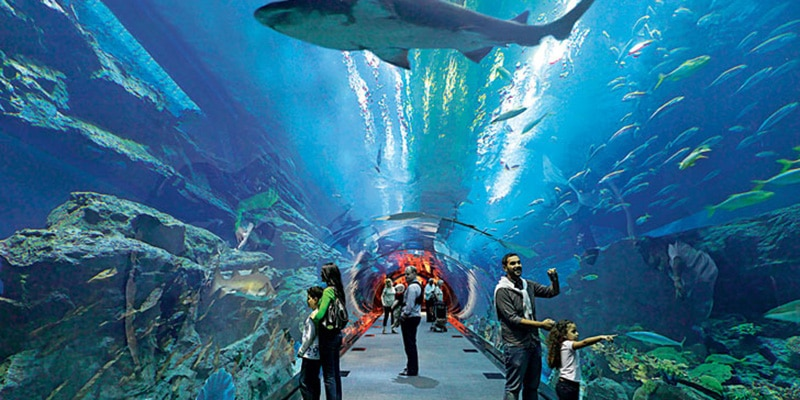 اكواريوم دبي من اجمل الاماكن السياحية في دبي الامارات - ومن اهم الاماكن السياحية فى دبى للعائلات