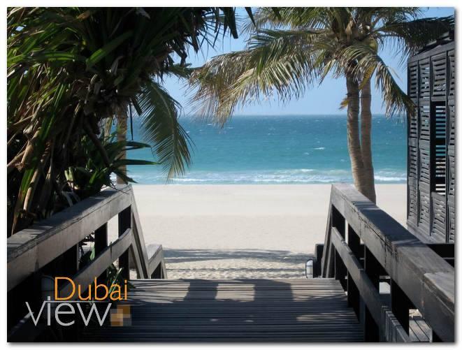 افضل 7 انشطة في حديقة شاطئ الجميرا دبي