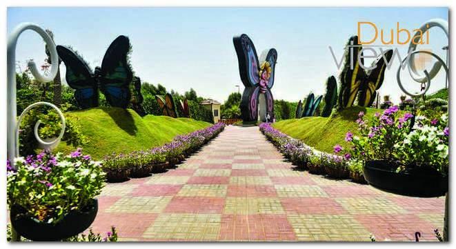 أفضل الانشطة التي يمكنكم القيام بها في حديقة الفراشات دبي