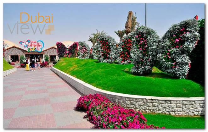 أوقات زيارة حديقة الفراشات دبي