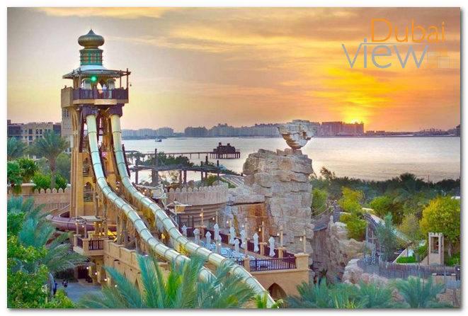 اوقات زيارة وايلد وادي دبي