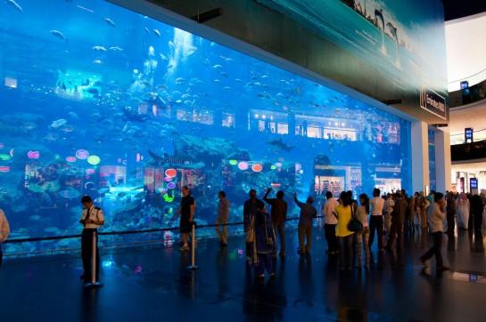 اماكن سياحية في دبي للعائلات