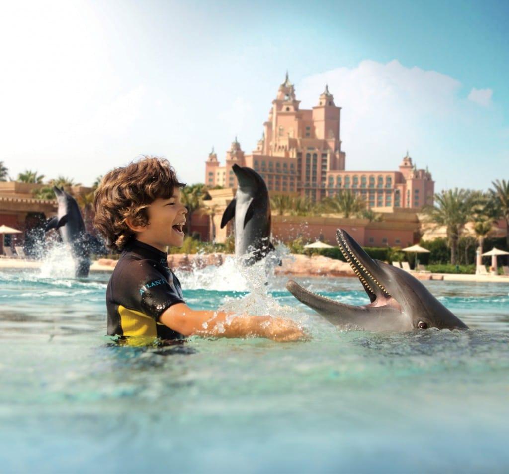 خليج الدلافين في دبي الامارات