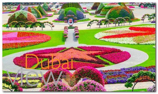 مواعيد زيارة حديقة الزهور في دبي