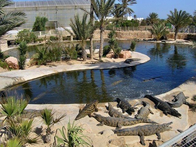 حديقة التماسيح من اجمل حدائق دبي